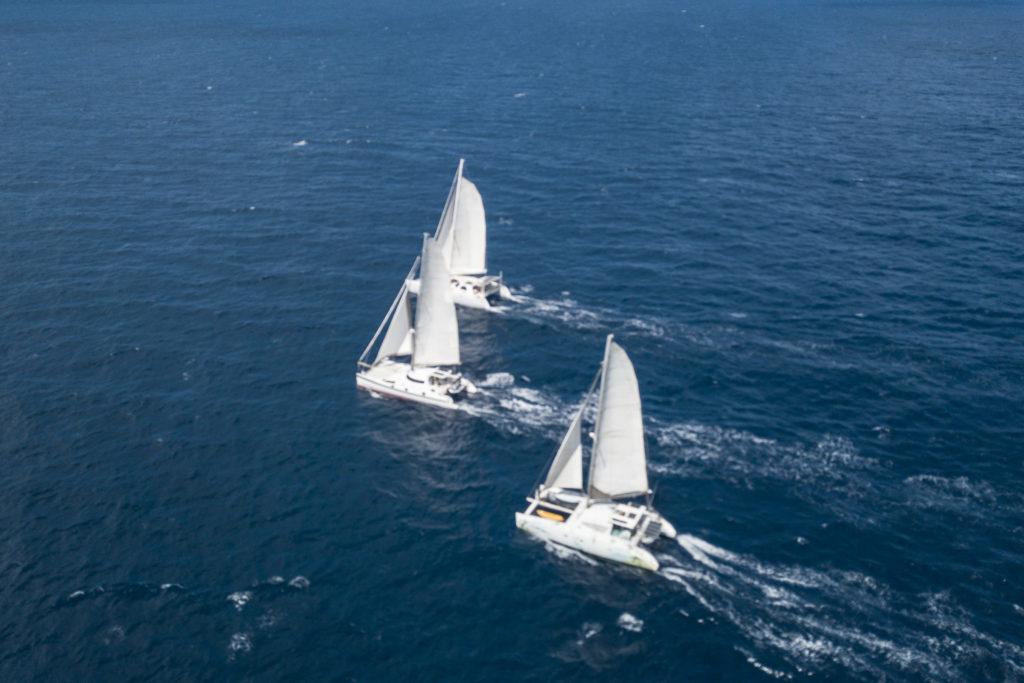 perfomance catamarans sailing drone shot